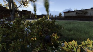 H1Z1 camouflage