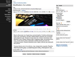 PluXml admin article